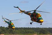 EW-336AO - Belarus - DOSAAF Mil Mi-2 aircraft