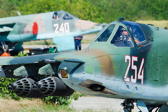 254 - Bulgaria - Air Force Sukhoi Su-25K