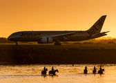 VH-VKE - Jetstar Airways Boeing 787-8 Dreamliner aircraft