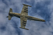6048 - Czech - Air Force Aero L-159A  Alca aircraft