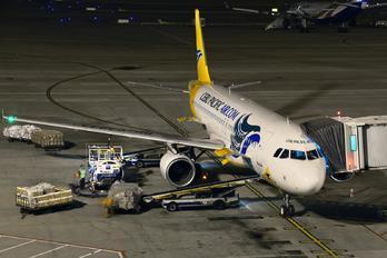 RP-C3243 - Cebu Pacific Air Airbus A320