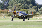 NX251RJ - Private North American P-51D Mustang aircraft