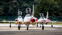 J-3086 - Switzerland - Air Force:  Patrouille de Suisse Northrop F-5E Tiger II aircraft