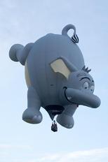N629PN - Private RVB Balloons SS-25-el Pea-Nut Elephant