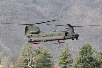 MM81778 - Italy - Army Boeing CH-47F Chinook