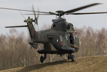 S-458 - Netherlands - Air Force Aerospatiale AS532 Cougar