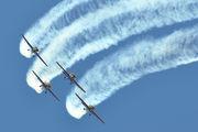 - - Royal Jordanian Falcons Extra 300L, LC, LP series aircraft