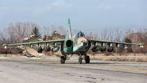 240 - Bulgaria - Air Force Sukhoi Su-25K aircraft