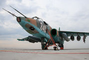 240 - Bulgaria - Air Force Sukhoi Su-25K aircraft