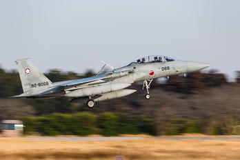 82-8066 - Japan - Air Self Defence Force Mitsubishi F-15J