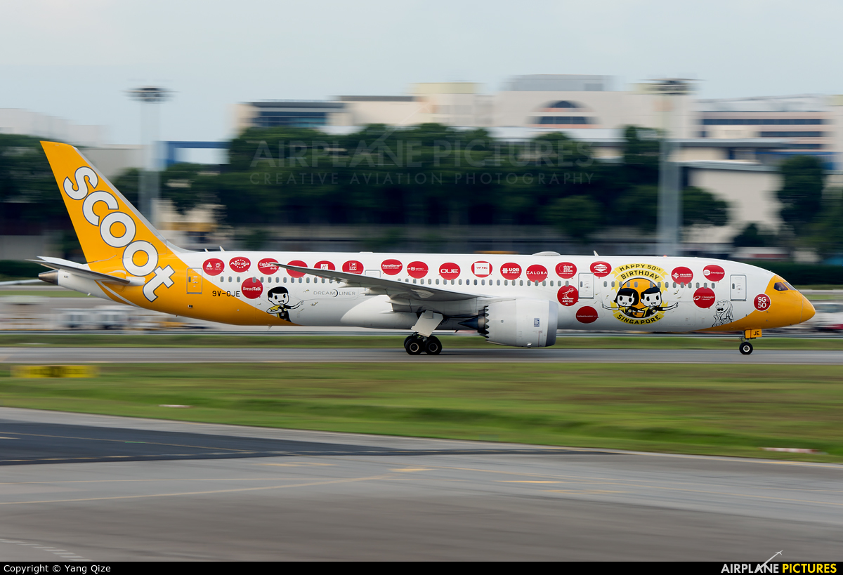 Scoot 9V-OJE aircraft at Singapore - Changi
