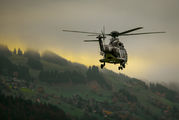 T-325 - Switzerland - Air Force Aerospatiale AS332 Super Puma aircraft