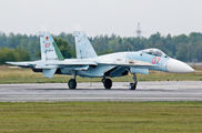 RF-92209 - Russia - Air Force Sukhoi Su-27SM aircraft