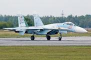 RF-92209 - Russia - Air Force Sukhoi Su-27SM aircraft