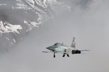 J-3033 - Switzerland - Air Force Northrop F-5E Tiger II