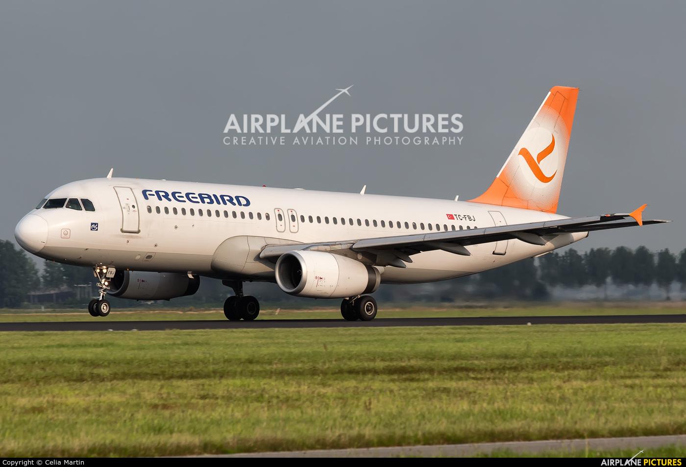 FreeBird Airlines TC-FBJ aircraft at Amsterdam - Schiphol