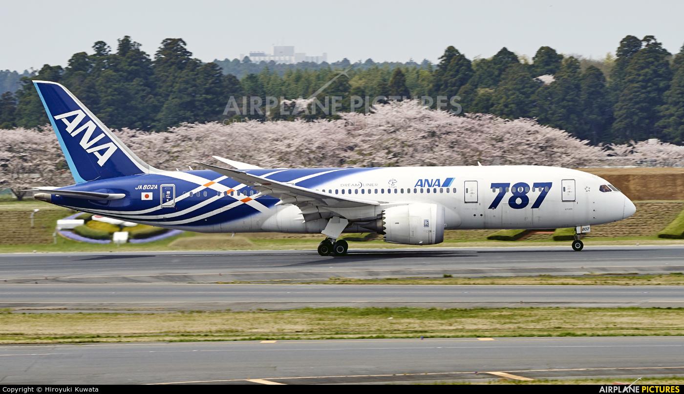 ANA - All Nippon Airways JA802A aircraft at Tokyo - Narita Intl