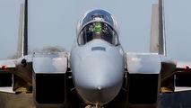 85-0129 - USA - Air National Guard McDonnell Douglas F-15D Eagle aircraft