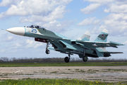25 - Russia - Air Force Sukhoi Su-27SM aircraft
