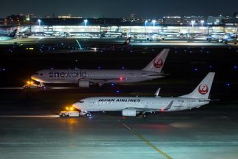 JA318J - JAL - Japan Airlines Boeing 737-800