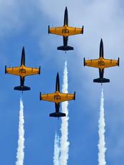 - - Russ AerobaticTeam Aero L-39 Albatros