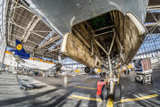 D-ALCP - Lufthansa Cargo McDonnell Douglas MD-11F aircraft