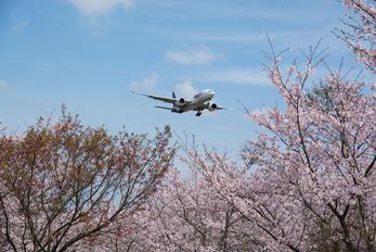 - - FedEx Federal Express Boeing 777F