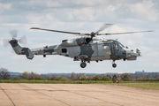 ZZ516 - Royal Navy Agusta Westland AW159 Lynx Wildcat AH.1 aircraft