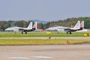 - - Israel - Defence Force McDonnell Douglas F-15D Eagle aircraft