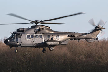 S-441 - Netherlands - Air Force Aerospatiale AS532 Cougar