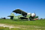 RF-01208 - DOSAAF / ROSTO Antonov An-2 aircraft