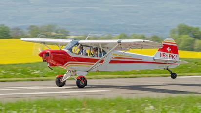 HB-PKI - Private Piper PA-18 Super Cub