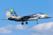 79-0041 - USA - Air Force McDonnell Douglas F-15C Eagle aircraft
