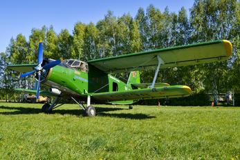 RF-01038 - DOSAAF / ROSTO Antonov An-2