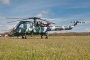 G-KAXT - Private Westland Wasp HAS.1 aircraft