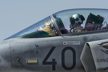 40 - Hungary - Air Force SAAB JAS 39C Gripen