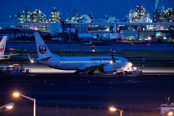 JA307J - JAL - Japan Airlines Boeing 737-800