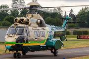N951LB - USA - Police Eurocopter AS332 Super Puma aircraft