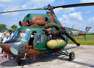 6003 - Poland - Army Mil Mi-2