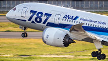 JA818A - ANA - All Nippon Airways Boeing 787-8 Dreamliner aircraft