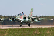 33 - Russia - Air Force Sukhoi Su-25UB aircraft