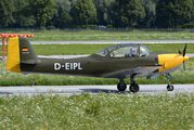 D-EIPL - Private Piaggio P.149 (all models) aircraft