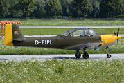 D-EIPL - Private Piaggio P.149 (all models) aircraft
