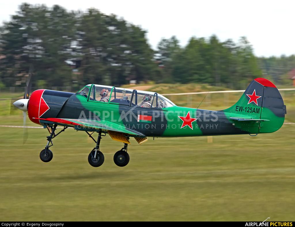 Belarus - DOSAAF EW-125AM aircraft at Borovaya