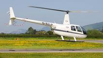 G-BZLP - Private Robinson R44 Astro / Raven aircraft