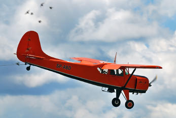 SP-ABD - Aeroklub Bydgoski Yakovlev Yak-12A
