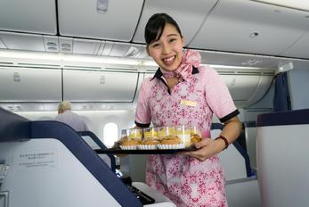 JA806A - ANA - All Nippon Airways - Aviation Glamour - Flight Attendant