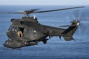ET-508 - Spain - Army Eurocopter AS332 Super Puma aircraft