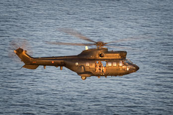 ET-508 - Spain - Army Eurocopter AS332 Super Puma