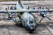 50+41 - Germany - Air Force Transall C-160D aircraft